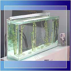 aqua services reims 51 l 39 aquariophilie source de bien tre aquariums exclusifs. Black Bedroom Furniture Sets. Home Design Ideas